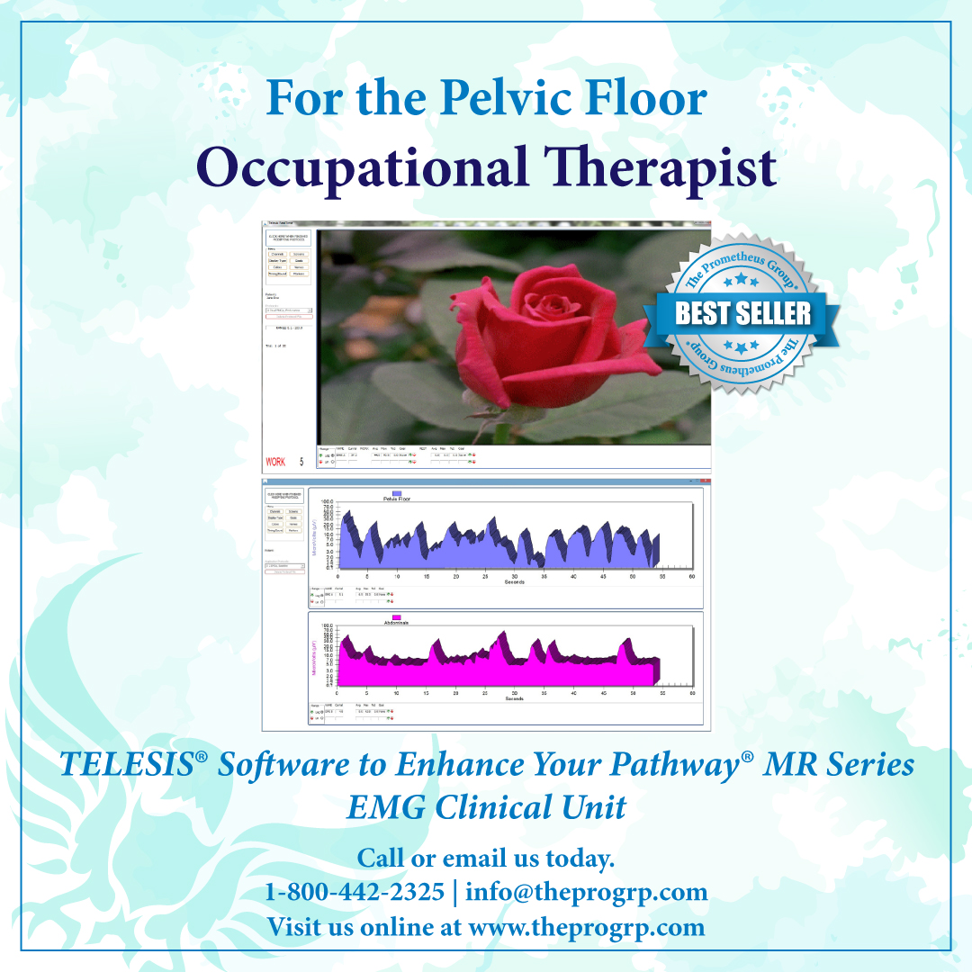 Pelvic Floor Occupational Therapy